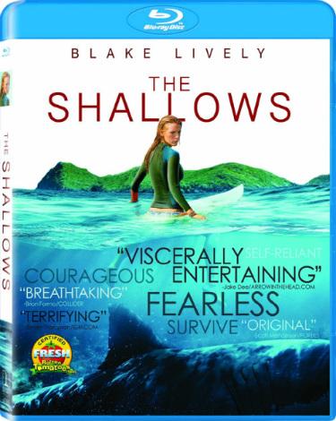 shallows